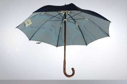 Oak wood umbrella with Blue Rhizome Print
